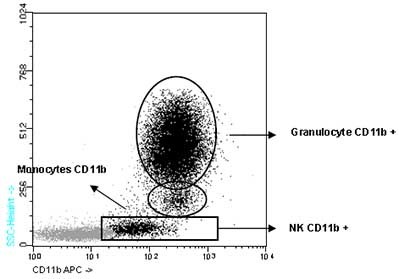 Flow Cytometry - CD11b antibody [DCIS1/18] (Allophycocyanin) (ab90943)