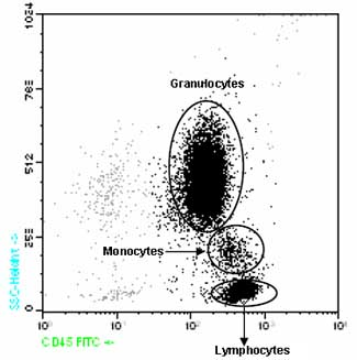 Flow Cytometry - CD45 antibody [D3/9] (FITC) (ab90958)