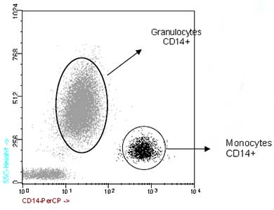 Flow Cytometry - CD14 antibody [47-3D6] (PerCP) (ab91146)