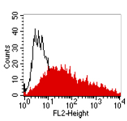 Flow Cytometry - CEACAM1 + CEACAM5 antibody [4/3/17] (ab91213)