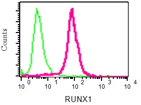 Flow Cytometry - Anti-RUNX1 / AML1 + RUNX3 + RUNX2 antibody [EPR3099] (ab92336)