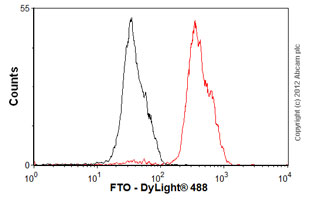 Flow Cytometry-Anti-FTO antibody [5-2H10](ab92821)