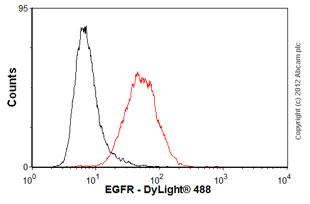 Flow Cytometry-Anti-EGFR antibody [31G7](ab93051)