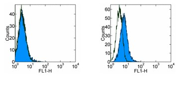 Flow Cytometry - PD1 antibody [RMP1-30] (FITC) (ab93579)