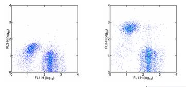 Flow Cytometry - Ly76 antibody [TER-119] (PE/Cy7 ®) (ab93583)