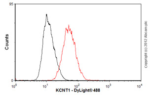 Flow Cytometry-Anti-KCNT1 antibody [S3-26](ab94578)