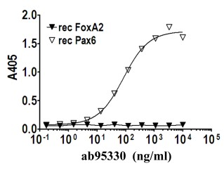 Indirect ELISA - PAX6 antibody [PR-2D11] (ab95330)