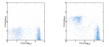 Flow Cytometry - CD3 antibody [145-2C11] (PE/Cy7 ®) (ab95506)