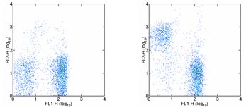 Flow Cytometry - CD5 antibody [53-7.3] (PE/Cy7 ®) (ab95557)