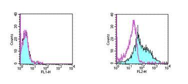 Flow Cytometry - CD252 antibody [RM134L] (Phycoerythrin) (ab95656)