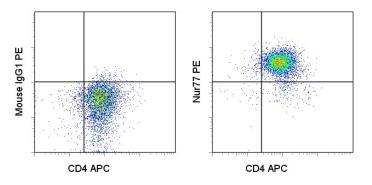 Flow Cytometry - NUR77 antibody [12.14] (Phycoerythrin) (ab95659)