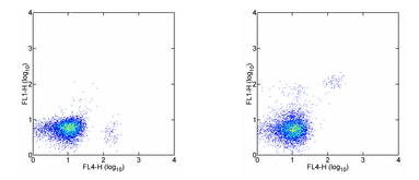 Flow Cytometry - IL3RA antibody [6H6] (FITC) (ab95782)
