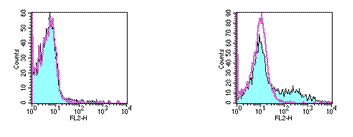 Flow Cytometry - CD153 antibody [RM153] (Phycoerythrin) (ab95801)