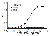 Indirect ELISA - Human Oct4 protein fragment (ab95845)