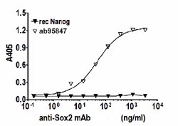 Indirect ELISA - SOX2 protein (Human) (ab95847)