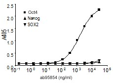 Indirect ELISA - Anti-Oct4 [PR-2H9] antibody (ab95854)