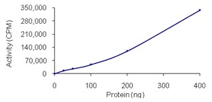 Functional Studies - PAK4 protein (Active) (ab96405)