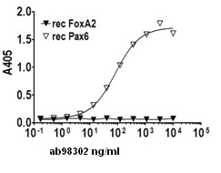 Indirect ELISA - PAX6 protein (ab98302)