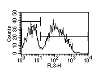 Flow Cytometry - Rat monoclonal [1B4B1]  Secondary Antibody to Mouse IgM - mu chain (PE/Cy7 ®) (ab99598)