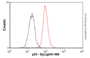 Flow Cytometry - Anti-p53 antibody (ab1101)