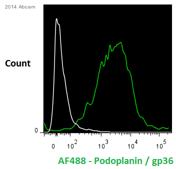 Flow Cytometry - Anti-Podoplanin / gp36 antibody [18H5] (ab10288)
