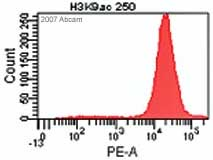 Flow Cytometry - Histone H3 (acetyl K9) antibody - ChIP Grade (ab10812)