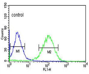 Flow Cytometry - Anti-ZNF202 antibody (ab103034)