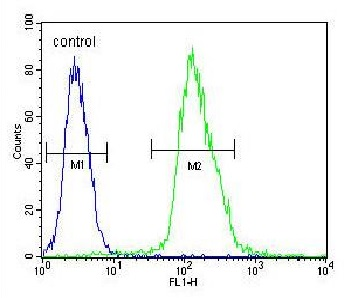 Flow Cytometry - Anti-MFAP4 antibody (ab103925)