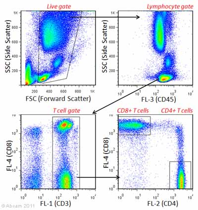Flow Cytometry - Multicolor Human T cell marker panel (CD3-FITC, CD4-PE, CD8-APC and CD45-PE/Cy7®) (ab106073)