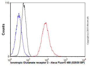 Flow Cytometry - Anti-Ionotropic Glutamate receptor 2 antibody [S21-32] (ab106515)