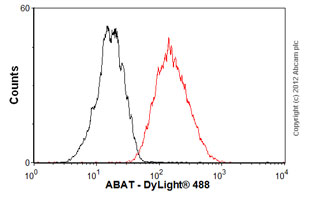Flow Cytometry - Anti-ABAT antibody [EPR4433] (ab108249)