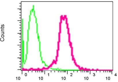 Flow Cytometry - Anti-Interferon regulatory factor 9 antibody [EPR3939] (ab109309)