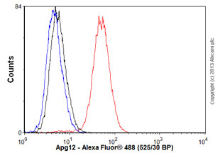 Flow Cytometry - Anti-Apg12 antibody [EPR4799] (ab109492)
