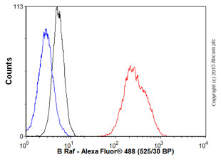 Flow Cytometry - Anti-B Raf antibody [1H12] (ab109688)