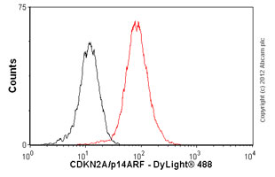 Flow Cytometry - Anti-CDKN2A/p14ARF antibody [ARF 4C6/4] (ab11048)