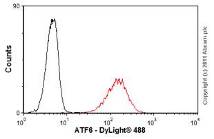 Flow Cytometry - Anti-ATF6 antibody [70B1413] - ChIP Grade (ab11909)