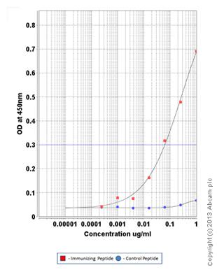 ELISA - Anti-AKT2 (phospho S474) antibody (ab110231)