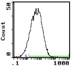 Flow Cytometry - Anti-Transferrin Receptor antibody [MRC OX-26] (Biotin) (ab112215)