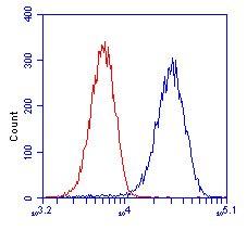 Flow Cytometry - Anti-GCDH antibody [3E9BA3BF5] (ab112998)