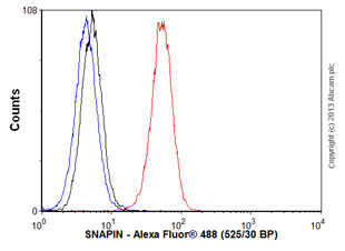 Flow Cytometry - Anti-SNAPIN antibody (ab118392)