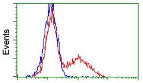 Flow Cytometry - Anti-GRHPR antibody [OTI9G2] (ab119081)