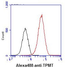 Flow Cytometry - Anti-TPMT antibody [AT2E7] (ab122984)