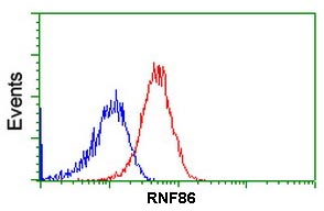 Flow Cytometry - Anti-RNF86 antibody [OTI4E5] (ab123899)
