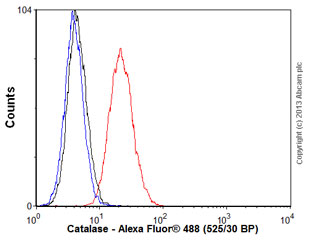 Flow Cytometry - Anti-Catalase antibody [1B6] (ab125688)