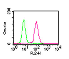 Flow Cytometry - Anti-NF-kB p65 [112A1021] antibody (ab13594)