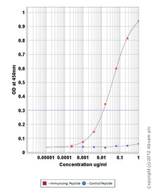 ELISA - Anti-ETS2 (phospho T72) antibody (ab153653)