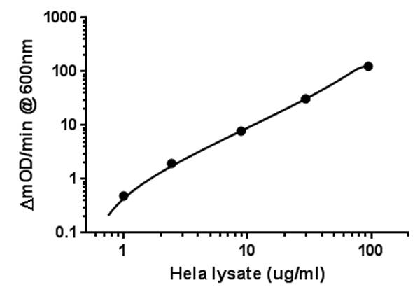 Figure 1.   Example standard curve.