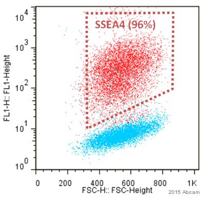 Flow Cytometry - Anti-SSEA4 antibody [MC813] (ab16287)