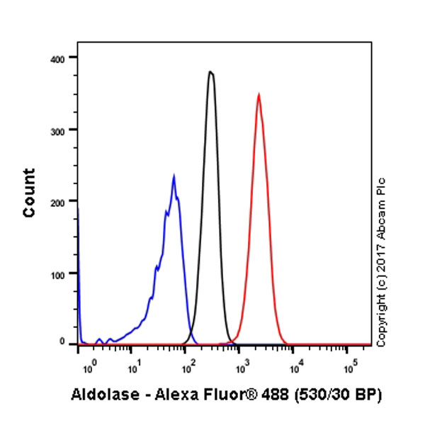 Flow Cytometry - Anti-Aldolase antibody [EPR9724(B)] (ab169544)
