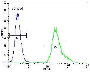Flow Cytometry - Anti-UBXN2A antibody - C-terminal (ab170264)